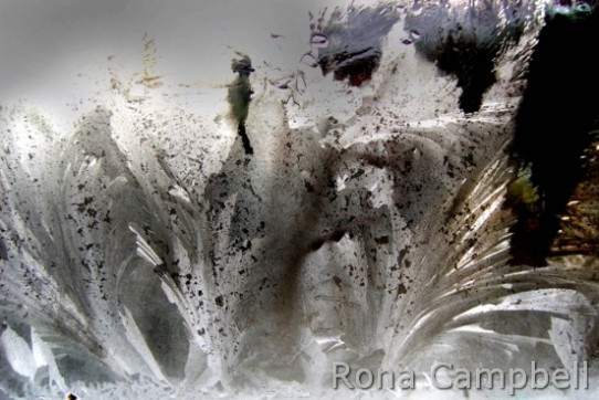 Ice Crystals on glass by Rona Campbell