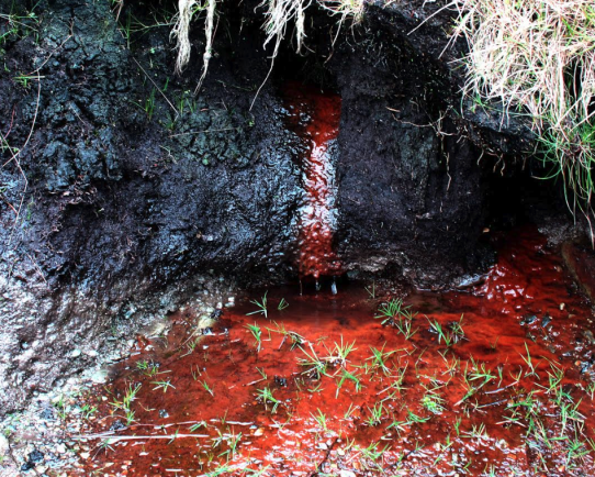 Eye-Spy Liquid Iron Ore pouring out through black peat bank. Llyn Brenig, North Wales