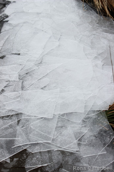 Wedding Dressed Ice - Fine Art Photography by Rona Campbell