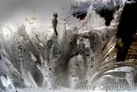 The Entree - Elevation Finished - Fine Art Photography by Rona Campbell