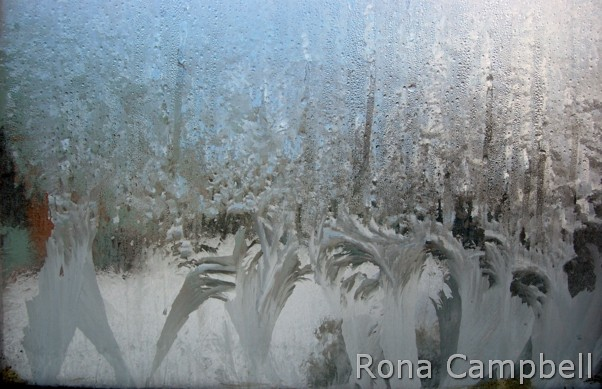 Corpse-de-ballet Elevation Finished - Fine Art Photography by Rona Campbell