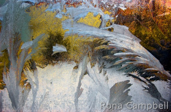 Elevation Finished - Elevation Finished - Fine Art Photography by Rona Campbell